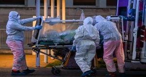 Virus Baru Muncul Di Kota Bologna
